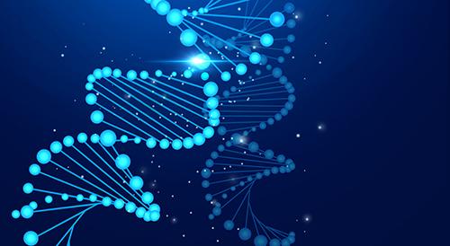 新一代的基因检测——乳腺癌基因检测