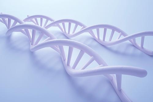 胎儿染色体缺陷怎么看——无创dna产前检测