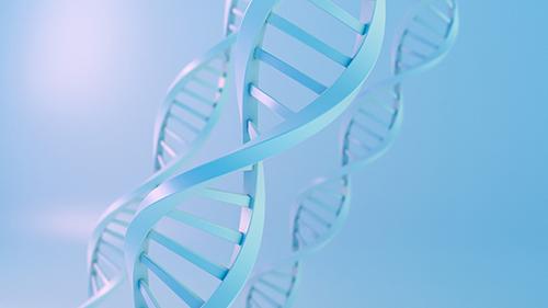 宝宝的健康选择——首选无创DNA胎儿产前检测